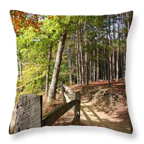 Tree Throw Pillow featuring the photograph Tree Trail by Margie Wildblood