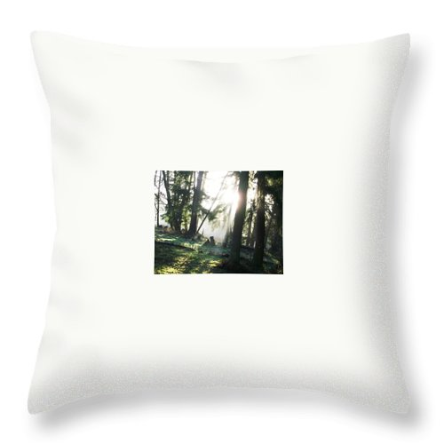 Trees Fog Throw Pillow featuring the photograph Trees by Amber Carpenter