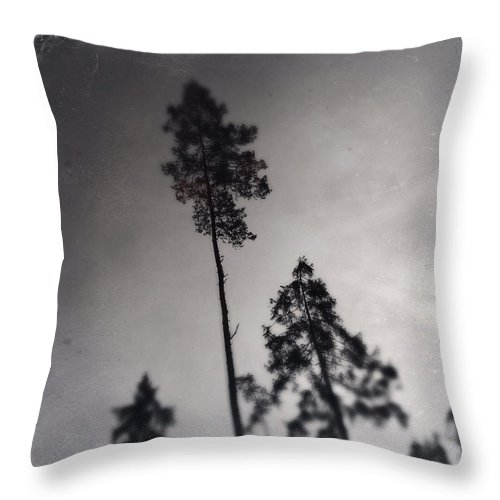 Tree Throw Pillow featuring the photograph Trees black and white wetplate by Matthias Hauser