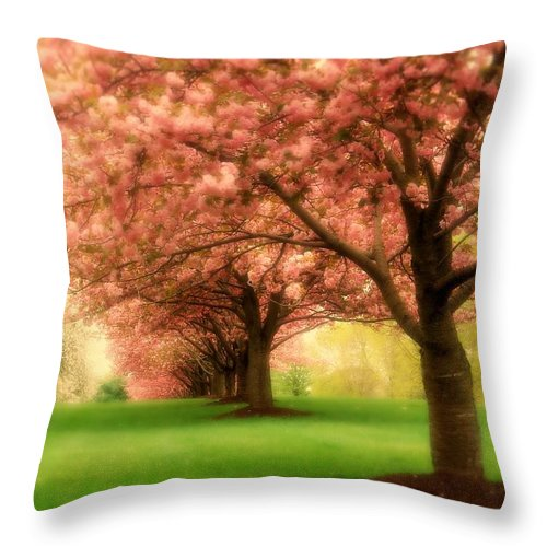 Cherry Blossom Trees Throw Pillow featuring the photograph Trees In A Row by Angie Tirado