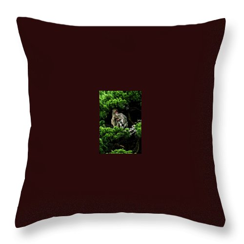 Trees Throw Pillow featuring the photograph Trees In Japan 10 by George Cabig