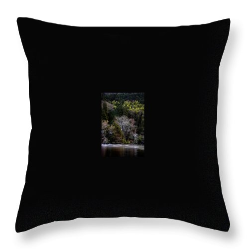 Landscape Throw Pillow featuring the photograph Trees In Japan 2 by George Cabig