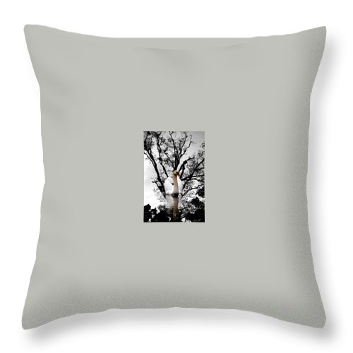 Water Throw Pillow featuring the photograph Trees In Japan 6 by George Cabig