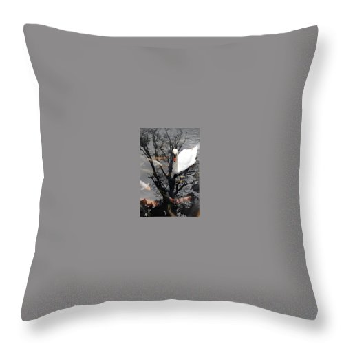 Water Throw Pillow featuring the photograph Trees In Japan 7 by George Cabig