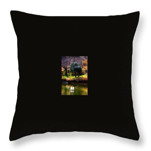 Swan Throw Pillow featuring the photograph Trees In Japan 8 by George Cabig