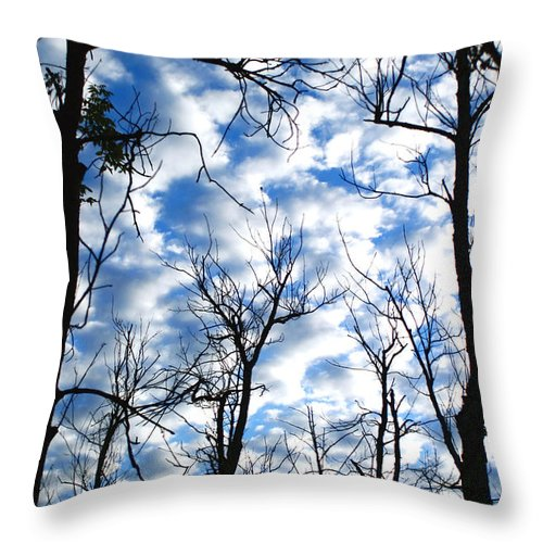 Trees Blue Sky Clouds White Puffy Landscape Photography Photograph Art Throw Pillow featuring the photograph Trees In The Sky by Shari Jardina
