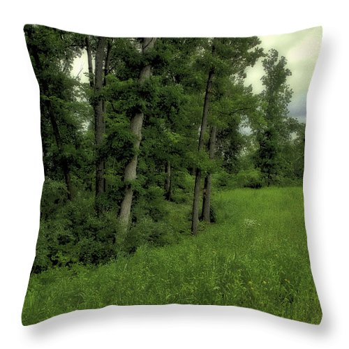 Tree Throw Pillow featuring the photograph Trees by Madeline Ellis