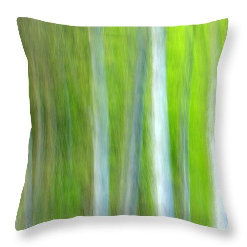 Trees Throw Pillow featuring the photograph Trees by Silke Magino
