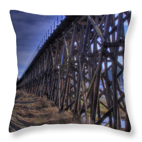 Tressel From The East Throw Pillow featuring the photograph Tressel From The East by David Patterson