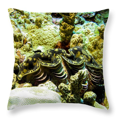 Coral Throw Pillow featuring the photograph Tridacna3 by Dan Norton