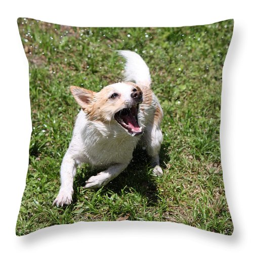 Hose Throw Pillow featuring the photograph Trigger Happy by Mandy Shupp