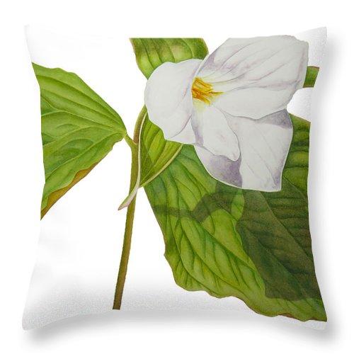 Trillium Throw Pillow featuring the painting Trillium by Kristina Spitzner