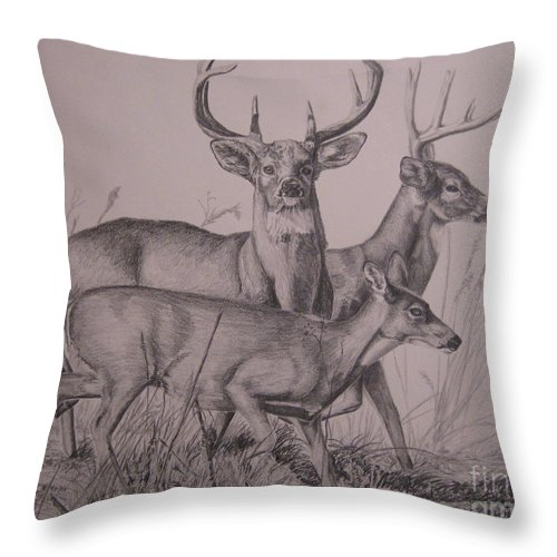Wildlife Throw Pillow featuring the drawing Trio by John Huntsman