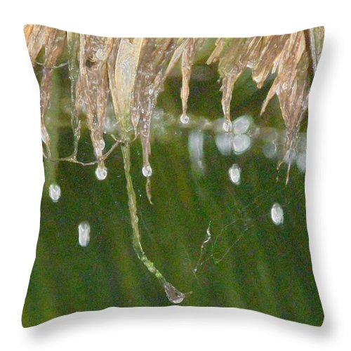 Bali Throw Pillow featuring the photograph Tropical Bali Rain by Mark Sellers