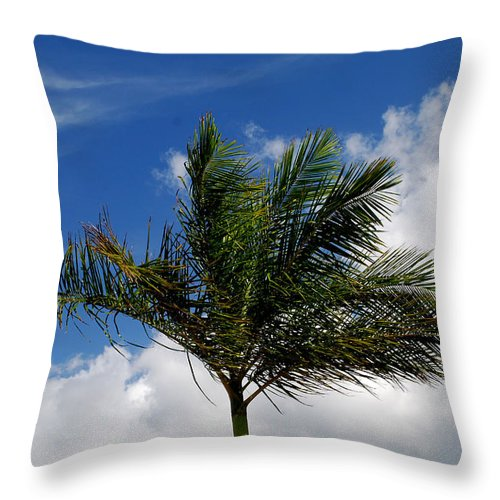 Palm Tree Throw Pillow featuring the photograph Tropical Breeze by Gary Wonning