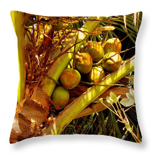Coconuts Throw Pillow featuring the photograph Tropical Dreams 1 by Susanne Van Hulst