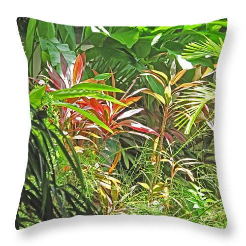 Tropical Throw Pillow featuring the photograph Tropical Dreams by Ian MacDonald