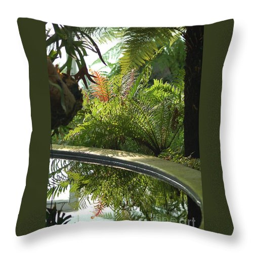 Tropical Plants Throw Pillow featuring the photograph Tropical Mirror by D Nigon