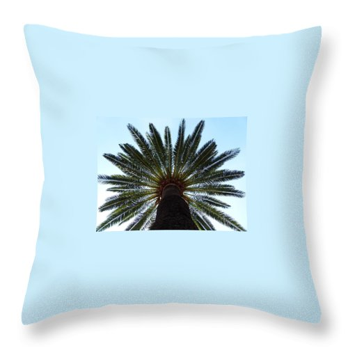 Palm Throw Pillow featuring the photograph Tropical Summer Palm Tree by Artpics