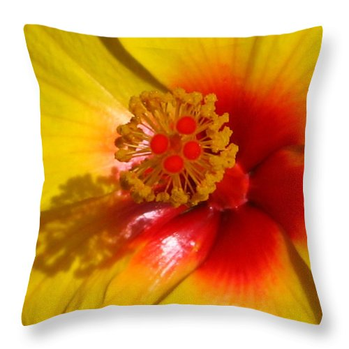 Hibiscus Throw Pillow featuring the photograph Tropical Treat by Marla McFall