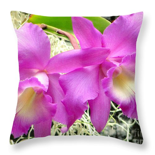 Orchid Throw Pillow featuring the photograph Tropical Twins by Sue Melvin
