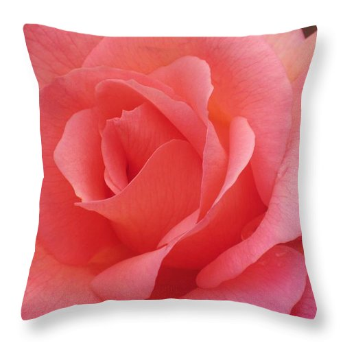 Rose Throw Pillow featuring the photograph Truly Pink by JAMART Photography