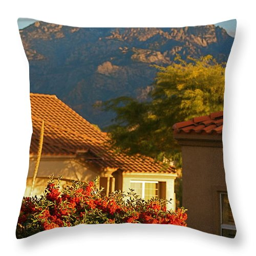 Mountains Throw Pillow featuring the photograph Tucson Beauty by Nadine Rippelmeyer