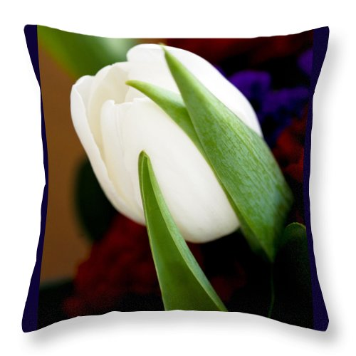 Floral Throw Pillow featuring the photograph Tulip Arrangement 4 by Marilyn Hunt