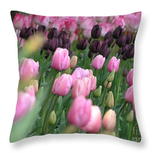 Tulips Throw Pillow featuring the photograph Tulip Dreams by Louise Magno