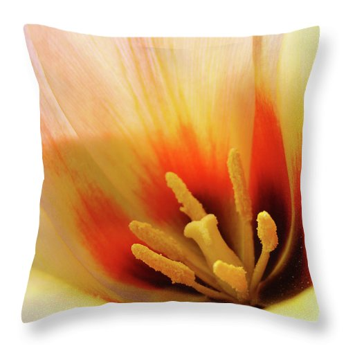 �tulips Artwork� Throw Pillow featuring the photograph Tulip Flower Artwork 31 Tulips Flowers Macro Spring Floral Art Prints by Baslee Troutman