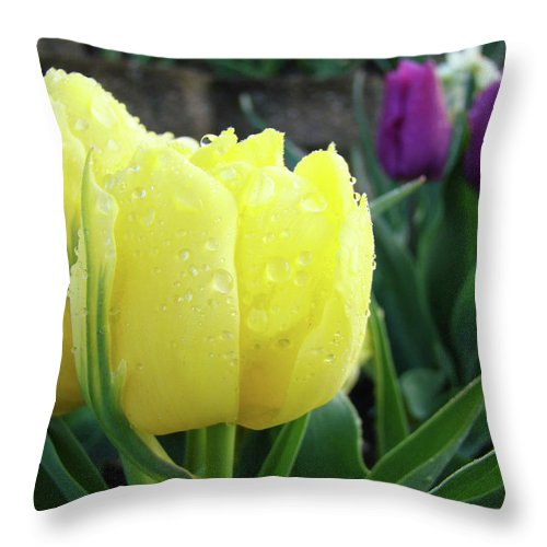 �tulips Artwork� Throw Pillow featuring the photograph Tulip Flowers Artwork Tulips Art Prints 10 Floral Art Gardens Baslee Troutman by Baslee Troutman