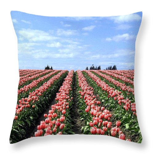 Agriculture Throw Pillow featuring the photograph Tulip Town 12 by Will Borden