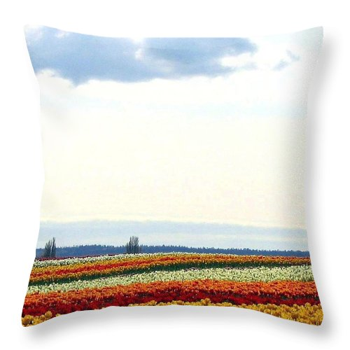 Agriculture Throw Pillow featuring the photograph Tulip Town 13 by Will Borden