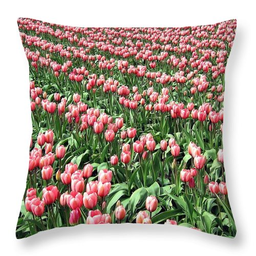 Agriculture Throw Pillow featuring the photograph Tulip Town 14 by Will Borden