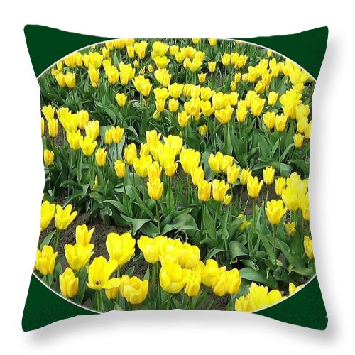 Agriculture Throw Pillow featuring the photograph Tulip Town 2 by Will Borden