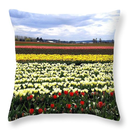 Agriculture Throw Pillow featuring the photograph Tulip Town 4 by Will Borden