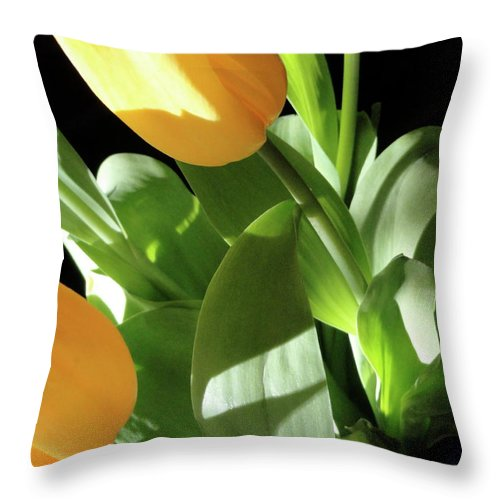 Yellow Throw Pillow featuring the photograph Tulip Trio by Shannon Grissom