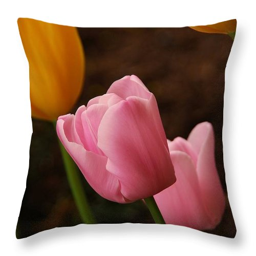 Tulips Throw Pillow featuring the photograph Tulips by Angie Tirado