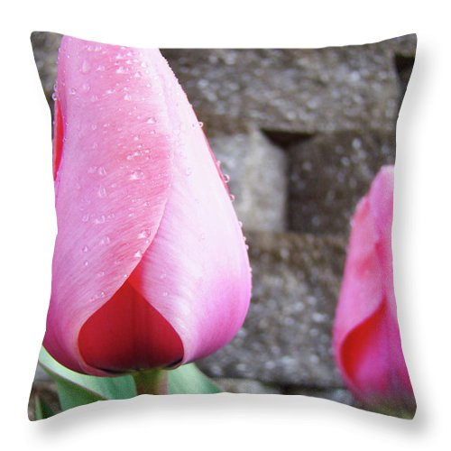 �tulips Artwork� Throw Pillow featuring the photograph Tulips Artwork Flowers 26 Pink Tulip Flowers Art Prints Nature Floral Art by Baslee Troutman
