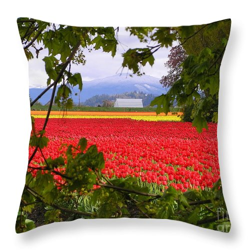 Tulip Throw Pillow featuring the photograph Tulips Secret Window by Louise Magno