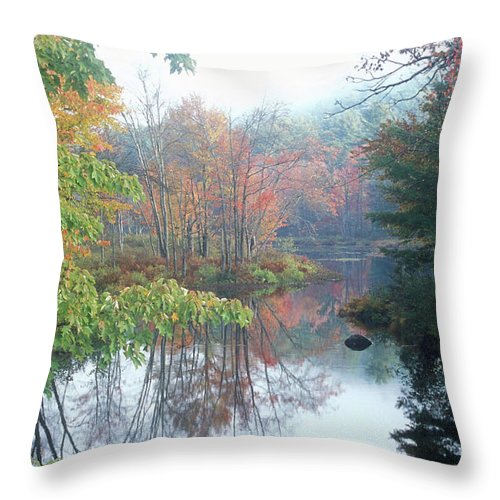 Autumn Throw Pillow featuring the photograph Tully River Autumn by John Burk