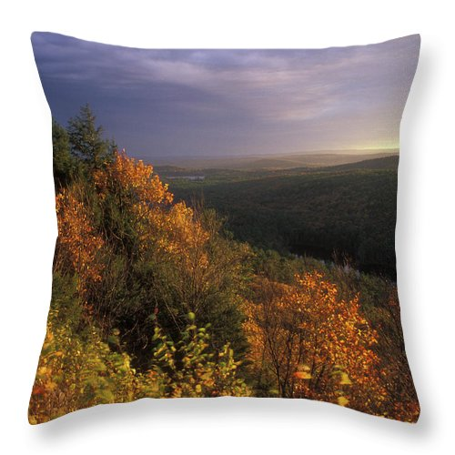 Tully River Throw Pillow featuring the photograph Tully River Valley Autumn by John Burk