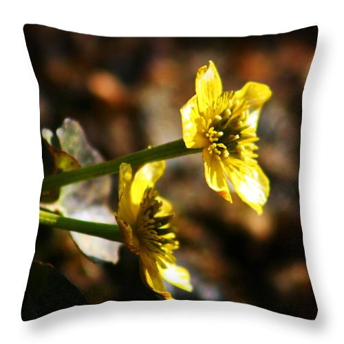 Wild Flowers Throw Pillow featuring the photograph Tundra Rose by Anthony Jones