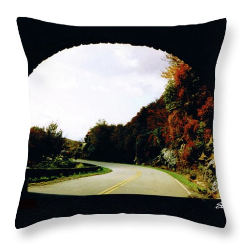 Tunnel Vision Throw Pillow featuring the photograph Tunnel Vision by Seth Weaver