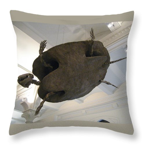 Turtle Throw Pillow featuring the photograph Turtle by Brian McDunn