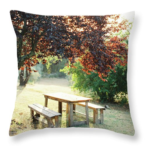 Tuscan Throw Pillow featuring the photograph Tuscan Picnic by Seth Mourra