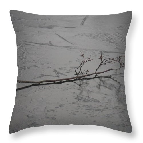 Twig On A Frozen Lake Just Waiting To Be Photographed Throw Pillow featuring the photograph Twig On A Frozen Lake by Gillian Lovett