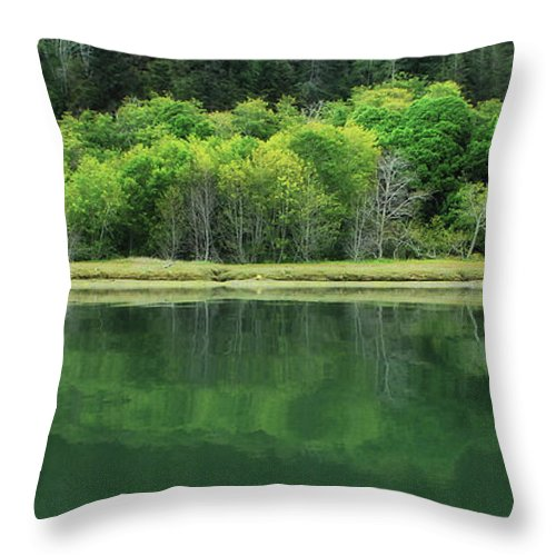 California Throw Pillow featuring the photograph Twilight Glow by Donna Blackhall