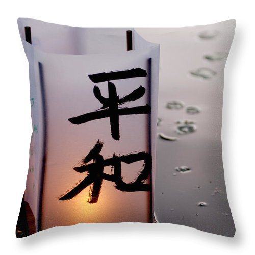 Reflection Throw Pillow featuring the photograph Twilight by Greg Fortier