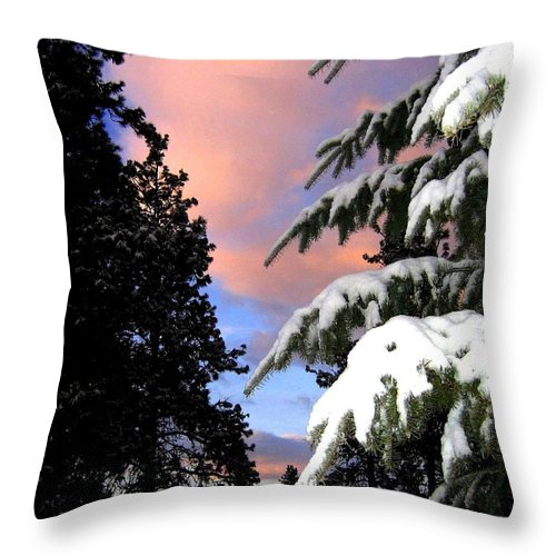 Sunset Throw Pillow featuring the photograph Twilight Hour by Will Borden